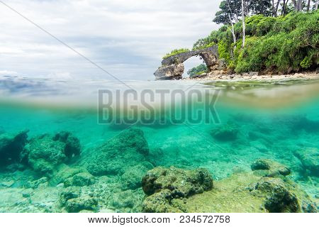 Split View Over And Under Sea Surface With Lush Tropical Shore Above Waterline And Corals With Sand