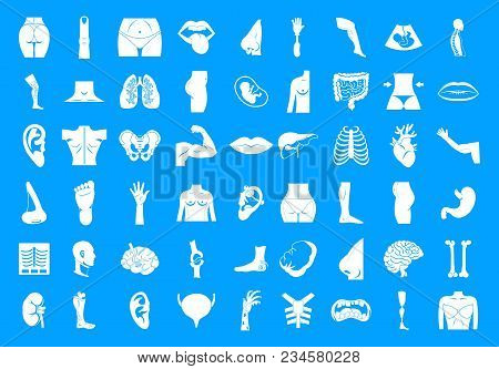 Human Body Icon Set. Simple Set Of Human Body Vector Icons For Web Design Isolated On Blue Backgroun