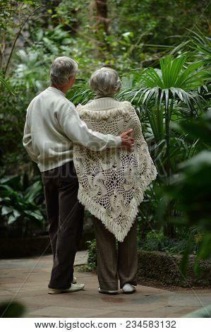 Beautiful Caucasian Senior Couple   In Park. Back View