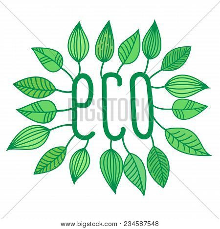 Green Eco Sign In With Growing Leaves, Vector Label And Tag, Ecological Concept Sticker, Letters