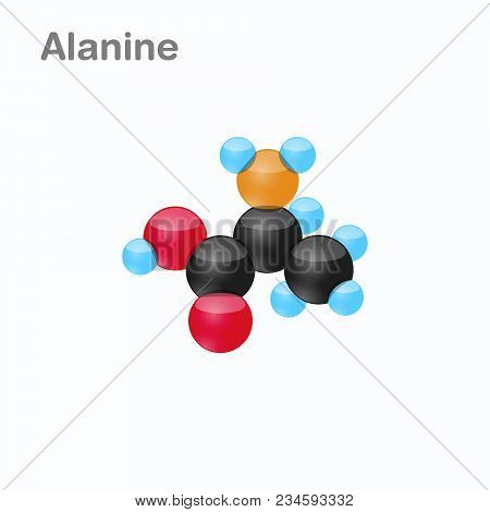 Molecule Of Alanine Ala An Amino Acid Used In The Biosynthesis Of Proteins Vector Illustration