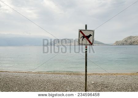 Prohibition Of Entry To Dogs On The Beach