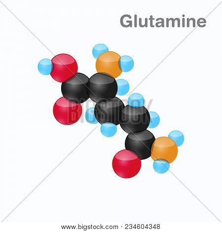 Molecule Of Glutamine, Gln, An Amino Acid Used In The Biosynthesis Of Proteins, Vector Illustration