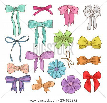 Girls Bow Vector Girlish Bowknot Or Girlie Ribbon On Hair Or For Decorating Gifts On Birtrhday Illus