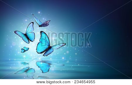 Fairy Light Blue Butterflies Flight On Water