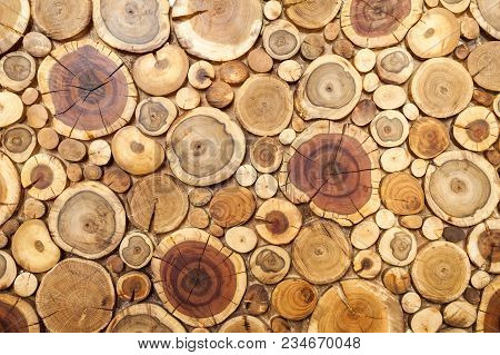 Round Wooden Stumps Background,trees Cut Section For Background Texture.