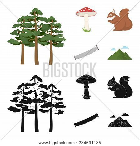 Pine, Poisonous Mushroom, Tree, Squirrel, Saw.forest Set Collection Icons In Cartoon, Black Style Ve