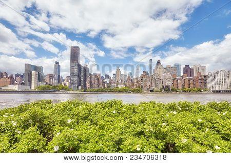 New York City Skyline Seen From The Roosevelt Island, Usa.