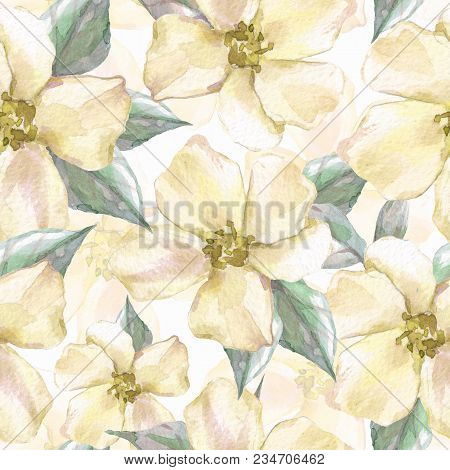 Floral Seamless Pattern 7. Watercolor Background With Delicate Flowers