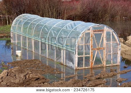 Plastic Greenhouse With Wooden Doors Surrounded With Grass, Ground, Branches, Vegetation And Rising