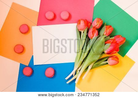 Bunch Of Spring Tulip Flowers, Card And Macaroon Cookies On Colorful Paper Background