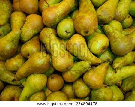 Pear Texture: Lots Of Pears Harvest Collected In Bins At Production Stage. Yummy Juicy Pear Fruit St
