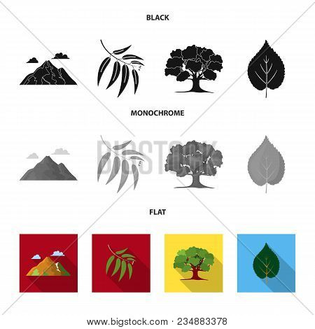 Mountain, Cloud, Tree, Branch, Leaf.forest Set Collection Icons In Black, Flat, Monochrome Style Vec