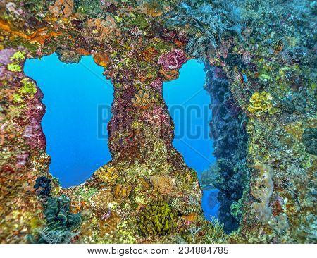 Underwater Scene Off The Coast Of Bali