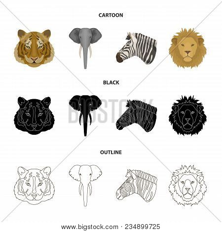 Tiger, Lion, Elephant, Zebra, Realistic Animals Set Collection Icons In Cartoon, Black, Outline Styl