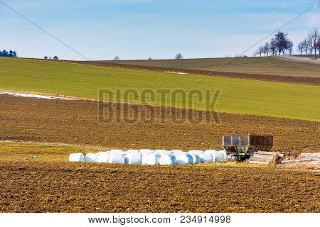 Straw Bales Placed On Field In Countryside. Landscape Of Big Field And Meadow. Agriculture And Harve