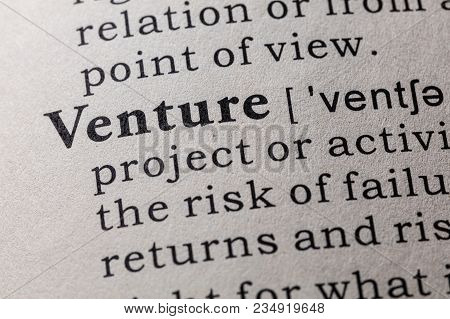 Fake Dictionary, Dictionary Definition Of The Word Venture. Including Key Descriptive Words.