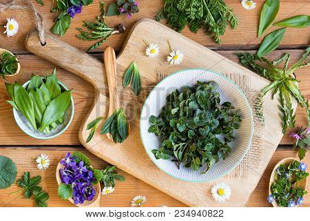 Fresh Wild Edible Spring Plants On A Wooden Table: Ground-ivy, Veronica, Violet Flower, Wild Garlic,