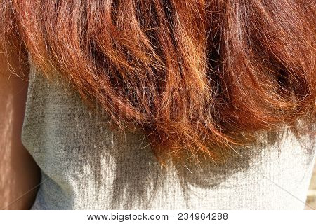 Hair Do Not Care For A Long Time, Hair Split Ends, Long Hair As Background Texture