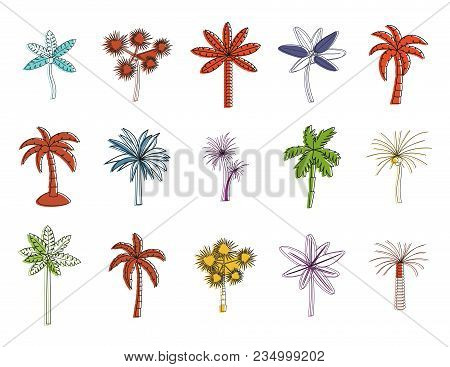 Palm Tree Icon Set. Color Outline Set Of Palm Tree Vector Icons For Web Design Isolated On White Bac