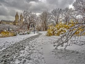 Snow Storm In Early April In Central Park, New York City