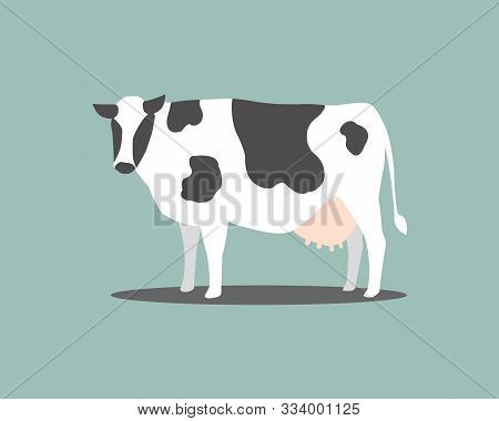 White Cow With Black Stripes On A Blue Backdrop. Dairy Cow For Dairy. Cow With White Stripes Alterna