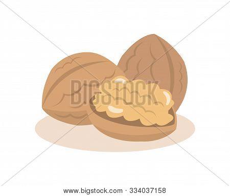 Walnut Nuts Isolated On White Background. Walnut Nuts