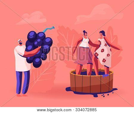 Winemaker Holding Huge Freshly Picked Up Wine Grapes, Harvesting On Vineyard. Happy Smiling Women St