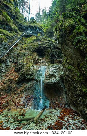 Hiking trail in Sucha Bela gorge in Slovensky raj National park, Slovakia.