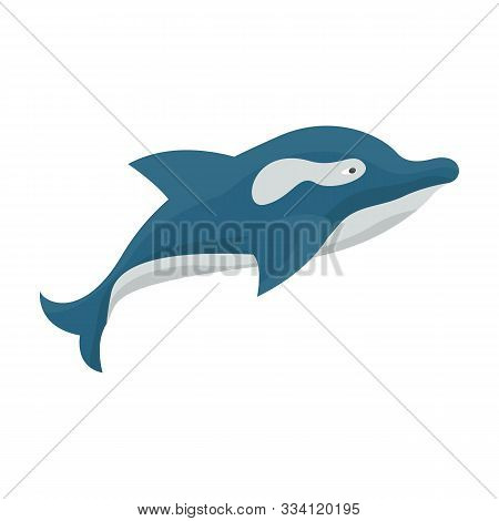 Whale Orca Vector Icon.cartoon Vector Icon Isolated On White Background Whale Orca.
