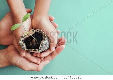 Hands Holding Seedling Plants In Newspaper Pot, Montessori Education , Csr  Corporate Social Respons