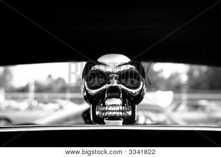 Chrome Skull In Black And White