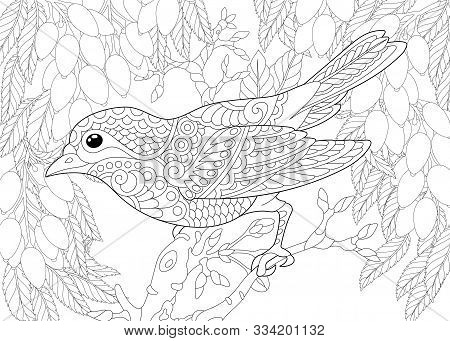 Coloring Page. Coloring Book. Colouring Picture With Bird In The Garden. Line Art Sketch Design With