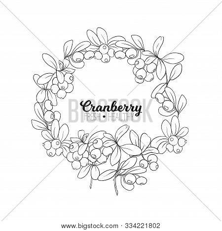 Cranberry. Element For Design. Good For Product Label. Outline Hand Drawing Vector Illustration..