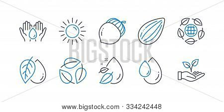 Set Of Nature Icons, Such As Mineral Oil, Sun, Almond Nut, Water Drop, Leaves, Oil Drop, Safe Water,