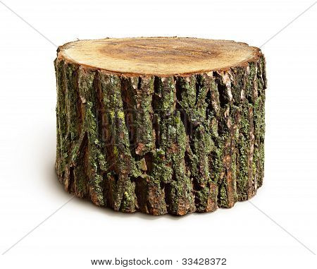 Stump isoliert