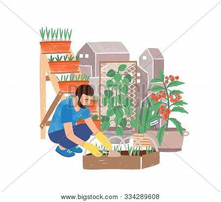 Urban Gardening Flat Vector Illustration. Male Gardener Planting Herbs Cartoon Character. Greening,