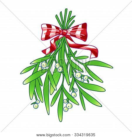 Mistletoe. Hand Drawn Vector Illustration Of Mistletoe Sprigs With Red Bow Isolated On White Backgro