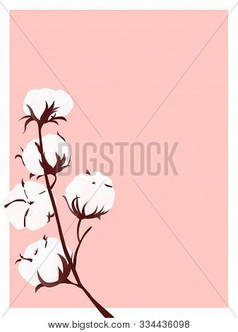 Romantic Concept With Cotton Branch On Pink Background.  Printable Poster Template. Shop Card. Vecto