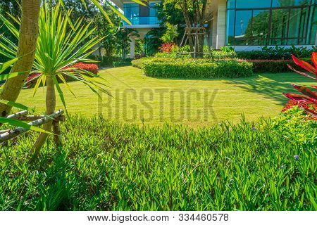 House In The Park, Green Lawn, Front Yard Is Beautifully Designed Garden, Flowers In The Garden, Gre