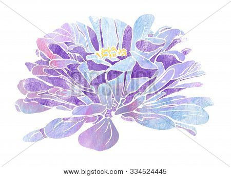 Purple Dahlia Watercolour In Vintage Style Isolated On White Background. Abstract Flower Illustratio