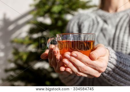 Tea Cup In Woman's Hand With Christmas Tree At Background