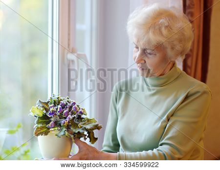 Portrait Of Beautiful Senior Woman With Curly Gray Hair. Elderly Is Standing By The Window And Takin
