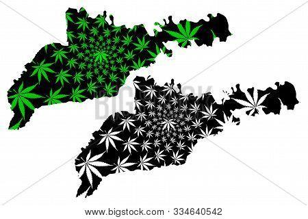Chernivtsi Oblast (administrative Divisions Of Ukraine, Oblasts Of Ukraine) Map Is Designed Cannabis