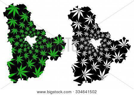 Kiev Oblast (administrative Divisions Of Ukraine, Oblasts Of Ukraine) Map Is Designed Cannabis Leaf