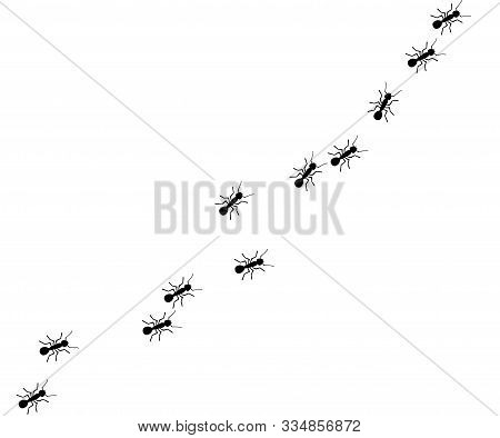 Worker Ants Marching. Vector Ant Background. Working Team Concept.