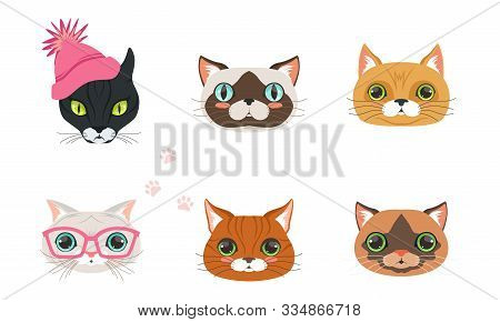 Cute Cartoon Cats And Dogs Muzzle Vector Set