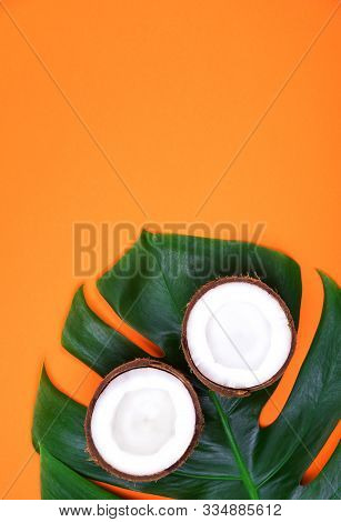 Top View Of Haved Ripe Coconut On Monstera Tropical Plant Leaf On Russet Orange Background. Summer C