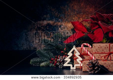 Christmas decoration with Red Poinsettia flowers (Euphorbia Pulcherrima), fir branch and gift boxes on a dark background. New year and Christmas background with copy space. Greeting card.