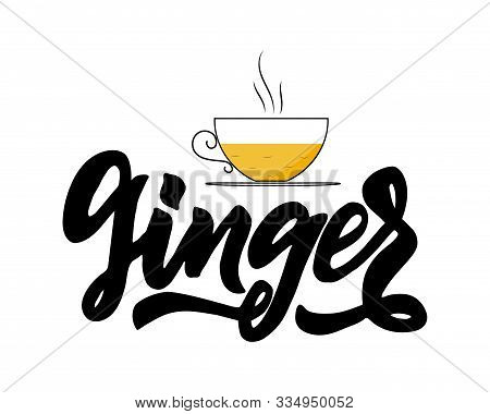 Ginger Type Of Tea With Cup. Hand Calligraphy Lettering With Cups. Vector Illustration. Template Of